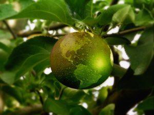 pomme apparence planète