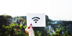 illustration du logo wifi en pleine nature
